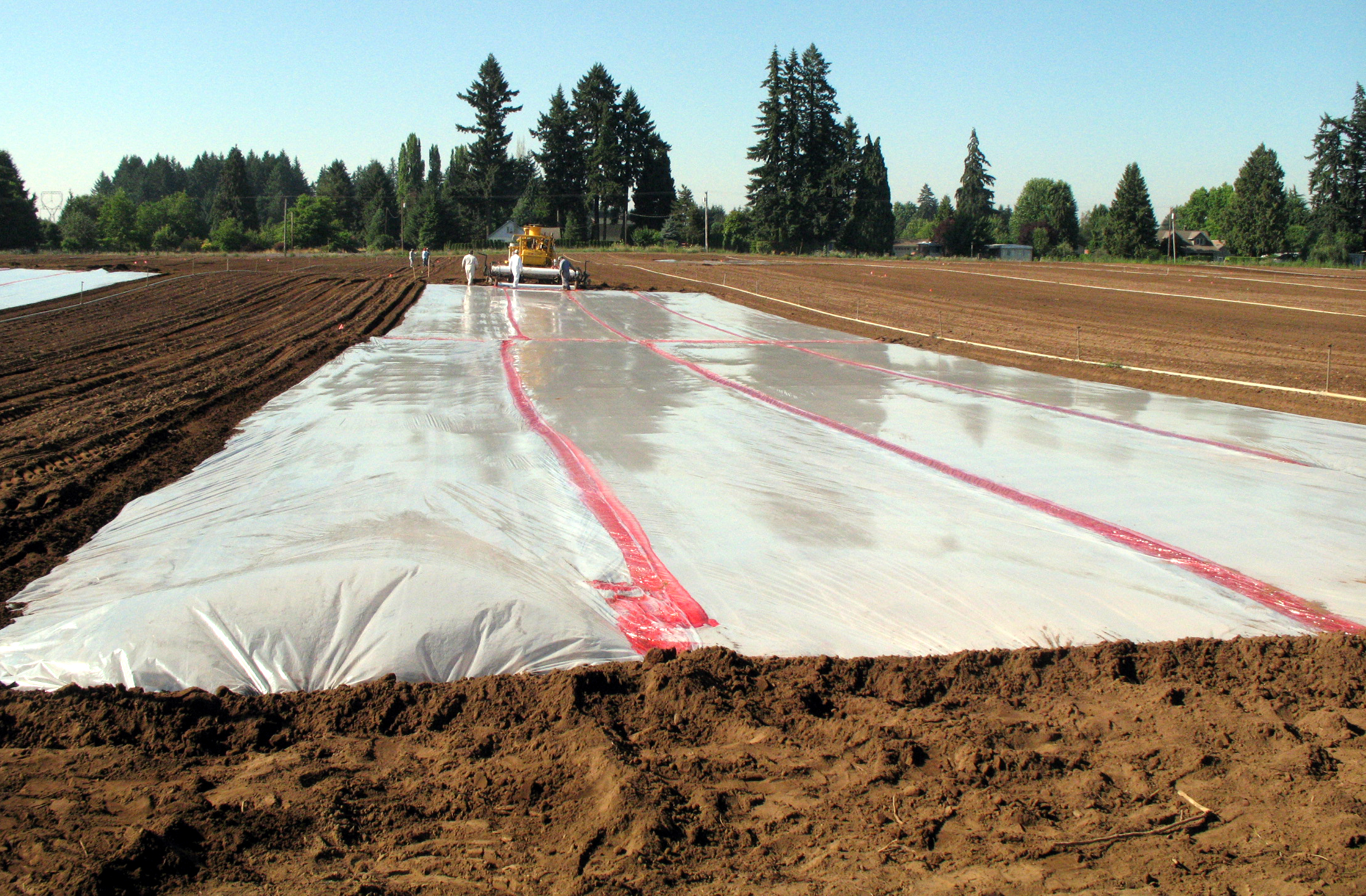 Fumigating soils for nematode control pacific northwest for Pictures of uses of soil