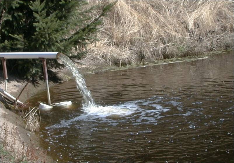 Treating Irrigation Water To Eliminate Water Molds