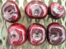 Image related to Cherry (Prunus spp.)-Powdery Mildew