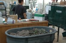 Dumped pots in a large bin near seeding machine operated a person
